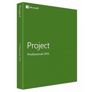 Project 2016 Professional (Nowa licencja / 1 stanowisko / Wieczysta)