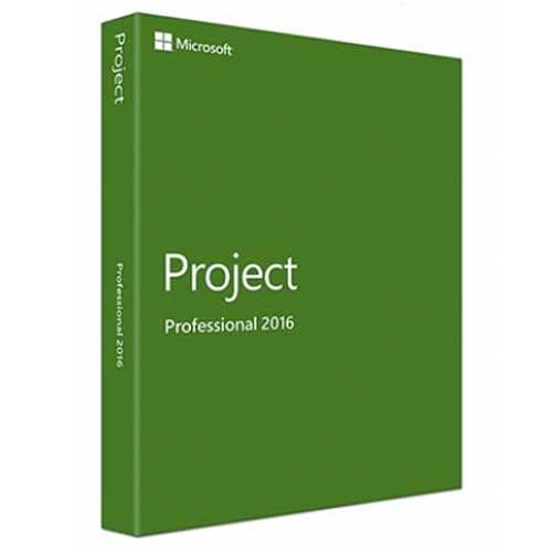 Project 2013 Professional (Nowa licencja / 1 stanowisko / Wieczysta)