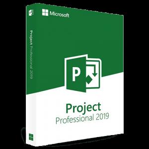 Project 2019 Professional (Nowa licencja / 1 stanowisko / Wieczysta)