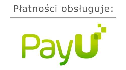 Obsługiwane Metody Płatności
