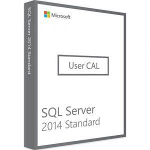 Microsoft SQL Server 2014 Standard | 1 User CAL (Nowa licencja / 1 stanowisko / Wieczysta)