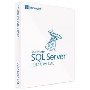Microsoft SQL Server 2017 Standard   1 User CAL (Nowa licencja / 1 stanowisko / Wieczysta)